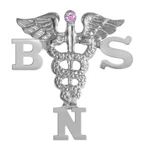 Registered Nurse on An 80  Bsn Prepared Nursing Workforce By 2020   Emerging Nurse Leader