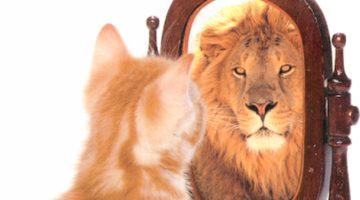 Self-Awareness in Leadership